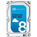 Disco Duro Int Enterprise/NAS